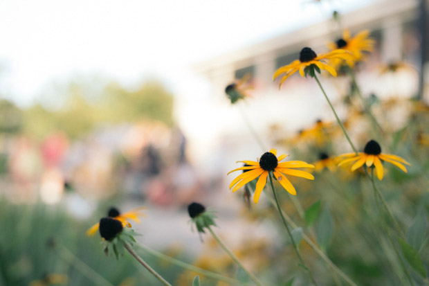 Pittsburgh-outdoor-wedding-photographer-photo-35