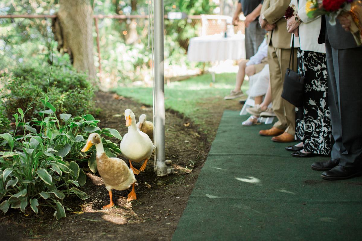 choderwood-wedding-photo-30